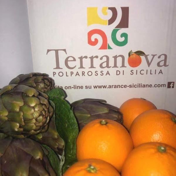 Pack 17 Kg combined Oranges Tarocco Table Rooster and Artichokes Violetta